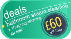 Bathroom steam cleaning for just £60.00