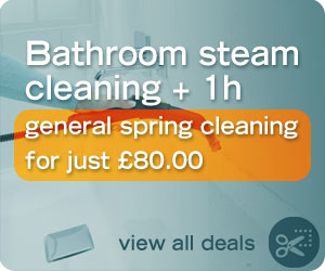 Bathroom steam cleaning + 1h spring cleaning deal for just £60